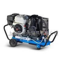 意大利进口压缩机 EOLO330/SH