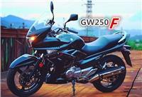 豪爵铃木GW250F 骊驰GW250F版