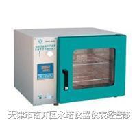 电热恒温鼓风干燥箱/烘箱/烤箱 DHG-9203A