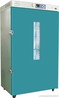 鼓风干燥箱 DHG9920B