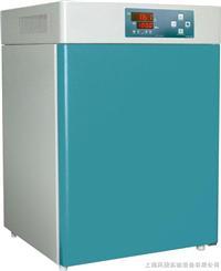 电热恒温培养箱 DHP-9082