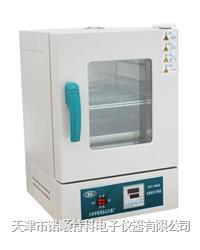 小型鼓风干燥箱/恒温干燥箱/恒温培养箱 101/202/303