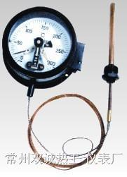压力式温度计 WTZ/WTQ
