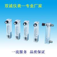 LZM-0908M-V特有机玻璃面板流量计 LZM-0908M-V特
