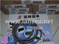 美国邦纳BANNER 传感器BT210SM900