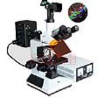 上海万衡数码型落射荧光显微镜M30D