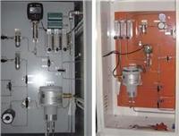 氫站過程氣體分析系統 SXM2000型