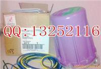美国霍尼韦尔C7012A1202火焰检测器 C7012A1202