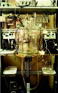 IH-9猪离体心脏研究系统