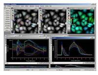 Meta Fluor 分析软件