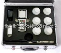 氯离子含量快速测定仪 HJ16-SSWY-810