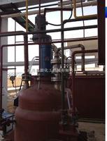 10ML催化氢化反应器