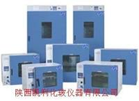 鼓風幹燥箱DHG9000/DHG9005(101)