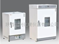 泰斯特電熱鼓風幹燥箱(WGL)