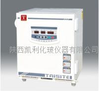 泰斯特二氧化碳培養箱(RYX)