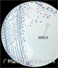 尿道定位显色培养基 K09A