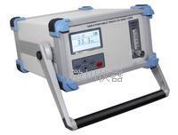 GBB20便携式常量氧分析仪