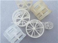 Industrial Plastic Pall Ring