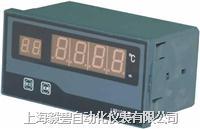 数字巡回检测报警仪 XMD- 100