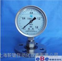 上海全不锈钢隔膜耐震压力表Y-100BFZ/MF DN25 Y-100BFZ/MF DN25