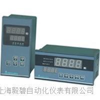 上海LDT3000智能数字显示报警仪 LDT3000