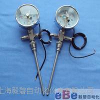 径向双支电阻电接点远传双金属温度计WTYY2-1031-X2 WTYY2-1031-X2