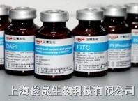 磺基罗丹明B磺酰氯 100 mg