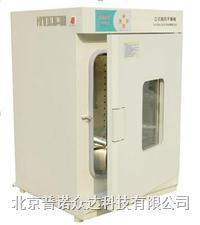 立式鼓风干燥箱 DHG-9070(B)