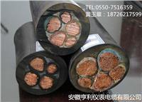 (高压扁电缆)(ZA-YJGCFPB-6/10KV22)(宝鸡) ZA-YJGCFPB-6/10KV22