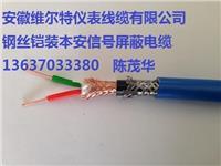 ZR-IA-DJFP2VFRP2-22 阻燃本安计算机屏蔽信号电缆