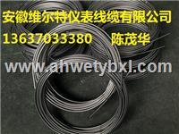 热电偶铠装丝-材质GH3030- 分度号N  双支 Φ6.0mm