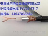 阻燃铠装三合一视频组合电缆(地埋专用电缆)SYV-75-5+RVVP-2*0.75+2*1.5【维尔特牌电缆】