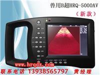 羊用B超HRQ-5000AV动物B超猪用B超羊用测孕仪 HRQ-5000AV