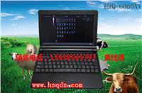 笔记本B超机/猪用B超/牛用B超/羊用B超/牛用B超的价格是多少/牛用B超哪家的好 HRQ-6000AV