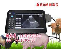 测母猪母羊用的兽用B超机最低多少钱 HRQ-5100AV