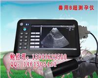 高清晰猪用B超测孕仪厂家最新报价 HRQ-5100AV