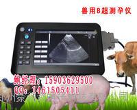 辽宁沈阳动物B超机猪用B超经销价格妊娠诊断仪 HRQ-5100AV
