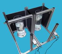 悬尾实验视频分析系统 DB0117