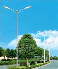 LED道路照明工程公司 LD
