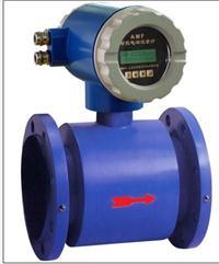 分體型電磁流量計 AMF-R100-101-1.6-0000
