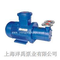 CWB磁力旋涡泵 CWB32-50;CWB20-65;CWB32-75;CWB40-140;