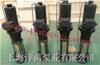 多级屏蔽泵 PBGDL