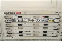 Spirent LAN-3320A 模块 Spirent LAN-3320A 模块