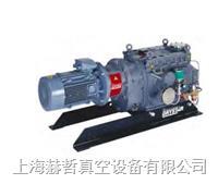 Edwards真空泵 工业干泵 GV250 爪式真空泵 爱德华工业干泵 干式真空泵 GV250