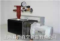 进口真空泵维修 上海真空泵维修 德国Leybold SV300 真空泵维修 莱宝真空泵维修 SV300