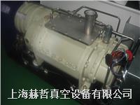 荏原真空泵维修 A10S