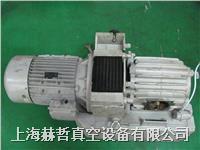 意大利 DVP真空泵维修 LC.305