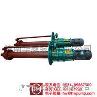 熔融盐泵 GY100-250   GY100-250
