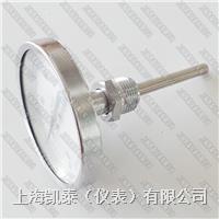 耐震双金属温度计 双金属温度计