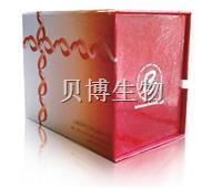 SDS-PAGE 凝胶配制试剂盒 BB-3702-50T   BestBio贝博生物    BB-3702-50T